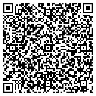 QR-код с контактной информацией организации СИБИН, ООО