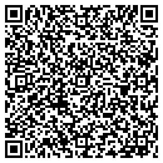 QR-код с контактной информацией организации БАКИЗ, ОАО