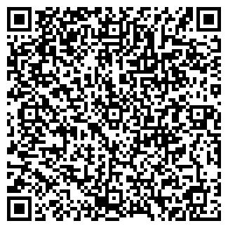 QR-код с контактной информацией организации ООО РИККОМ