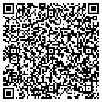 QR-код с контактной информацией организации ЗВЕЗДОПАД