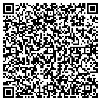 QR-код с контактной информацией организации АЛТАЙ ХОЛДИНГ