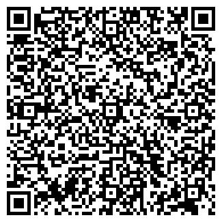 QR-код с контактной информацией организации АЛДИЗМАШ