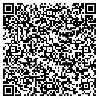 QR-код с контактной информацией организации ЛИСИЦЫНА А.В.