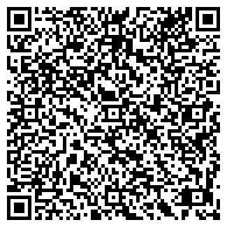 QR-код с контактной информацией организации БЛИН-КАРТОШКА