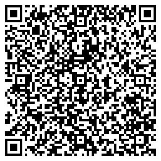 QR-код с контактной информацией организации ВАСЕЧКИН В.В.