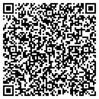 QR-код с контактной информацией организации БИШЕРКОН, ООО