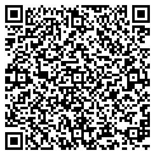 QR-код с контактной информацией организации АЛВИ