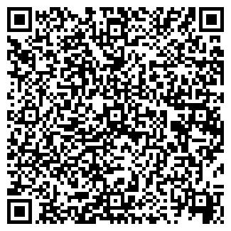 QR-код с контактной информацией организации ООО РАЙС