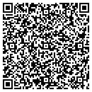 QR-код с контактной информацией организации БИЛЕНА, ООО
