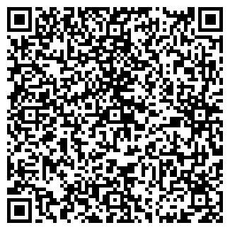 QR-код с контактной информацией организации РАЙФЛ, ООО