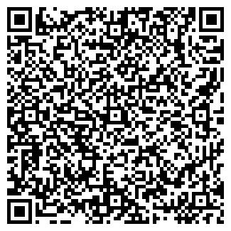 QR-код с контактной информацией организации ИГРУШКА, ИП