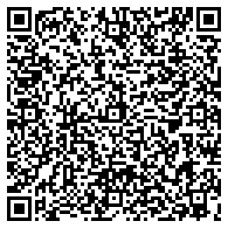 QR-код с контактной информацией организации СКАЙЛ, ООО