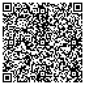 QR-код с контактной информацией организации ИРВЭС, ООО