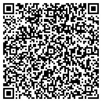QR-код с контактной информацией организации ВСЕ ИГРЫ
