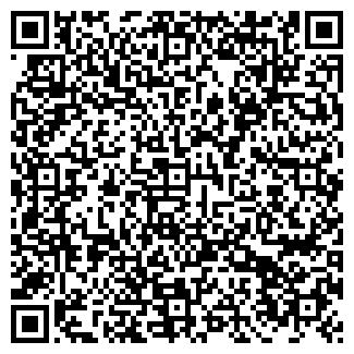 QR-код с контактной информацией организации ДИНОПЛАНЕТА