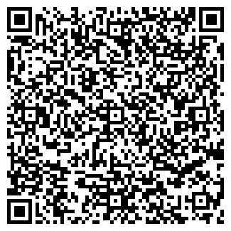 QR-код с контактной информацией организации ООО ДИНА КЕМЕРОВО