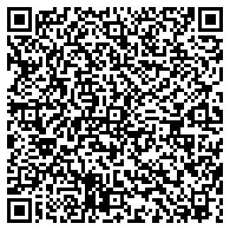 QR-код с контактной информацией организации ООО СИБИСТВЕСТ