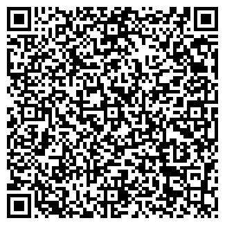 QR-код с контактной информацией организации ООО СИБИНС
