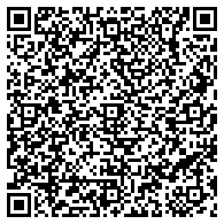QR-код с контактной информацией организации ВАРИАНТ 999