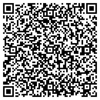 QR-код с контактной информацией организации РАСЧЕТНО-КАССОВЫЙ ЦЕНТР ДУДИНКА