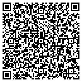 QR-код с контактной информацией организации ИП ДУЛЯ