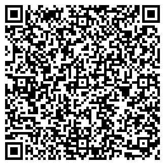 QR-код с контактной информацией организации ТЕЛЕСФЕРА