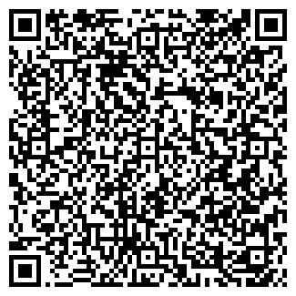 QR-код с контактной информацией организации 24 РЕГИОН