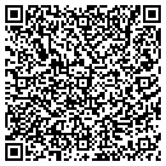QR-код с контактной информацией организации ВЭЛЛ-С ФИРМА