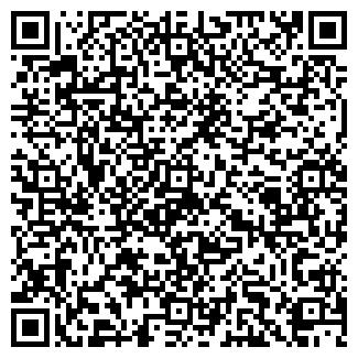 QR-код с контактной информацией организации № 299
