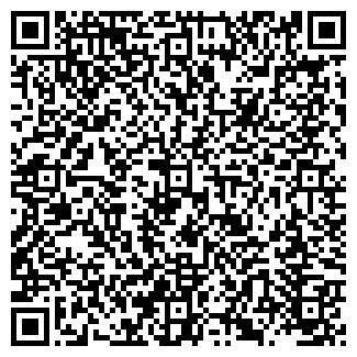 QR-код с контактной информацией организации ДЕЛО ПЛЮС