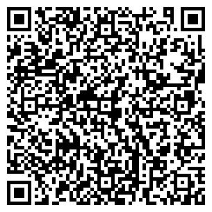 QR-код с контактной информацией организации 85