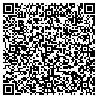 QR-код с контактной информацией организации № 22 СДЮШОР