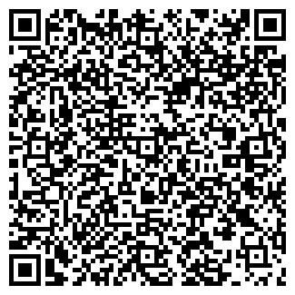 QR-код с контактной информацией организации СТИЛЬ МАГАЗИН