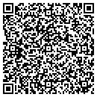 QR-код с контактной информацией организации ВСЕ ЗВЕЗДЫ