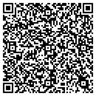 QR-код с контактной информацией организации ТЕМИР ГП