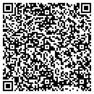 QR-код с контактной информацией организации ВАЛЬКИРИ, ООО