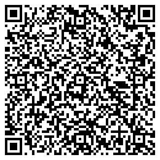 QR-код с контактной информацией организации № 227