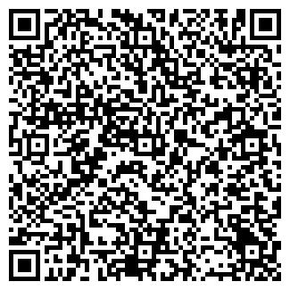 QR-код с контактной информацией организации ТИНСКОЙ, ЗАО