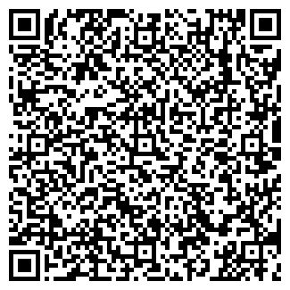 QR-код с контактной информацией организации ТОПЛАЙН ООО