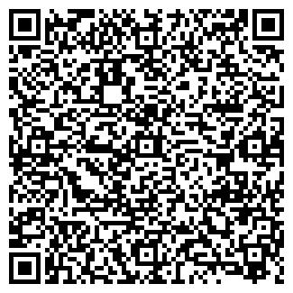 QR-код с контактной информацией организации ЭМИЛИЯ ИЧП