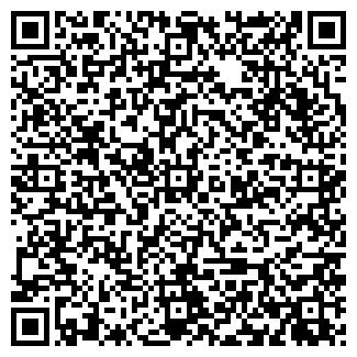 QR-код с контактной информацией организации ВИКА АРТ-СТУДИЯ