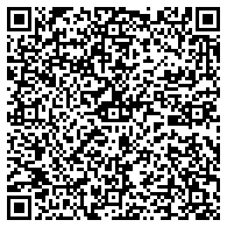 QR-код с контактной информацией организации ШОК САЛОН