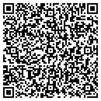 QR-код с контактной информацией организации РОМИН ЧП