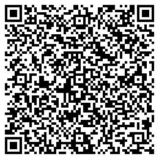 QR-код с контактной информацией организации ШИШИНО