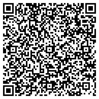 QR-код с контактной информацией организации ОРЛОВА Е.В. ИП