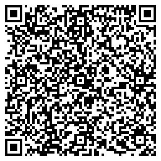 QR-код с контактной информацией организации ПЛИНИЙ ООО