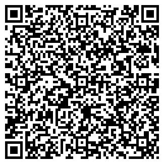 QR-код с контактной информацией организации ШКОЛА №8