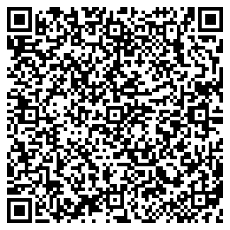 QR-код с контактной информацией организации ЛЫСЕНКО, ИП