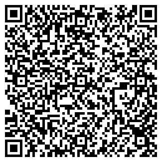 QR-код с контактной информацией организации SHOW GIRLS
