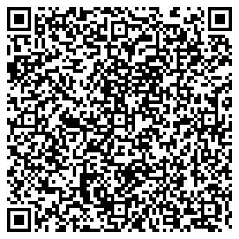 QR-код с контактной информацией организации НИКОЛАЙ-ИНГЕО, ООО
